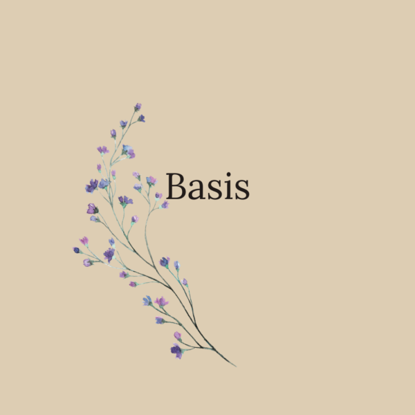 HSP programma basis